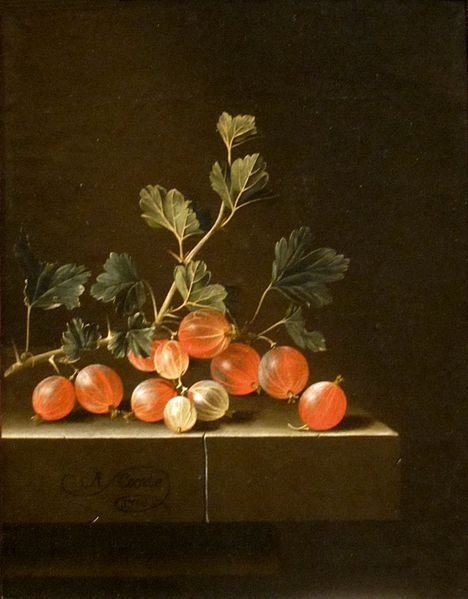 Gooseberries_on_a_Table'_by_Adriaen_Coorte,_1701,_Cleveland_Museum_of_Art