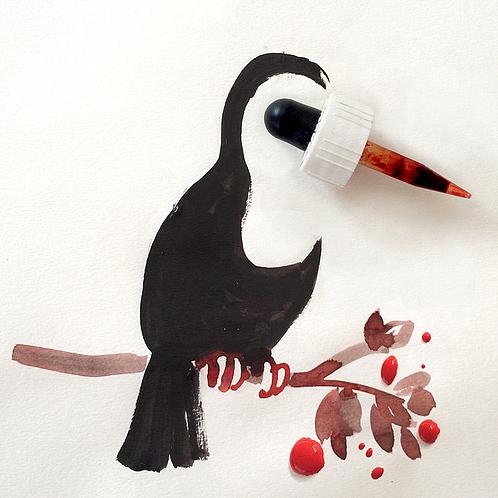 niemann-toucan