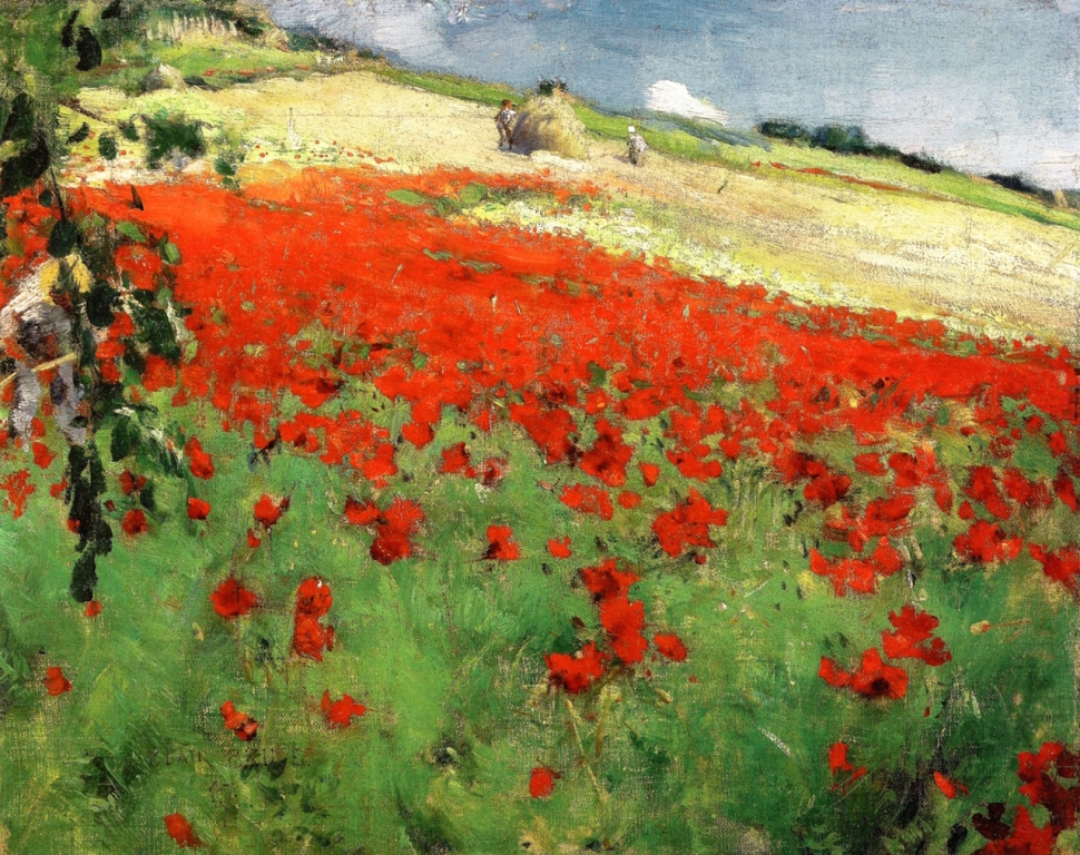 William Blair Bruce poppies